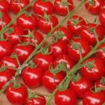 マルシェ・ノートルダム トマト