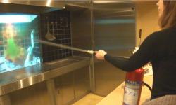 初期消火体験では、天ぷら火災を想定して消火器の使い方を学びます。