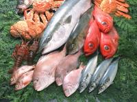 食中毒を防ぐ食品保存方法