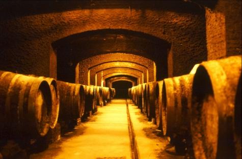 茨城県牛久市 牛久シャトー ワイン貯蔵庫 長時間露出