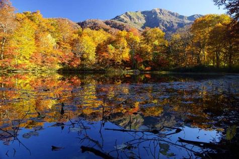 錦秋の刈込池
