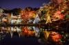 肥後細川庭園のライトアップ