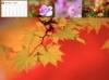 10月度カレンダー